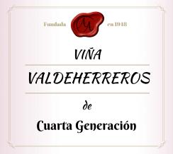 Bodega - Viña Valdeherreros - Color vino